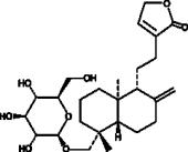 Neoandro<wbr/>grapholide