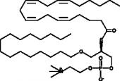 Arachidonoyl thio-<wbr/>PC