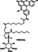 PtdIns-<wbr/>(3,4,5)-<wbr/>P<sub>3</sub>-<wbr/>fluorescein (ammonium salt)