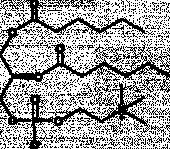 1,2-Dihexanoyl-<wbr/><em>sn</em>-glycero-3-PC