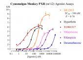 Cyn Monkey PXR Reporter Assay System, 1 x 96-well format assays