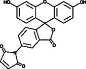 Fluorescein-5-<wbr/>maleimide