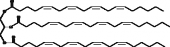 Glycerol Triarachidonoyl