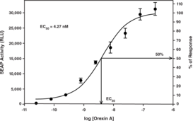 Orexin 2 Receptor Reporter Assay Kit