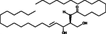C16 Ceramide (d18:1/16:0)