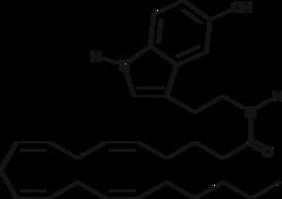 Arachidonoyl Serotonin