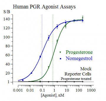 Human PGR Reporter Assay System, 1 x 96-well format assay