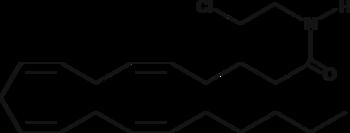 Arachidonoyl 2'-<wbr/>Chloroethylamide