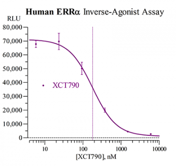 Human ERRα Reporter Assay System, 3 x 32 assays in 96-well format