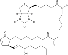 Prostaglandin A<sub>1</sub>-<wbr/>biotin