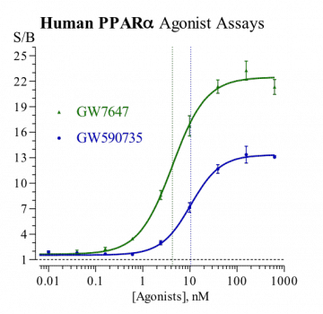 Human PPARα Reporter Assay System, 1 x 96-well format assay