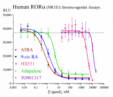 Human RORα Reporter Assay System, 3 x 32 assays in 96-well format