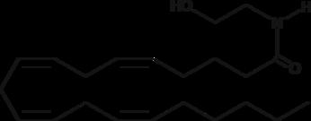 Arachidonoyl Ethanolamide