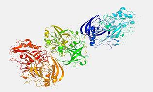 Proteins Bertin Bioreagent 4