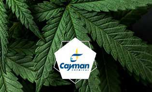 New brochure available: Cannabis Testing Standards