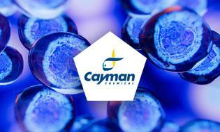 September Focus: Cayman tools dedicated to Ferroptosis