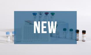Bertin Bioreagent launches 2 new ELISA kits for accurate quantification of S100A8/S100A9 heterodimer & S100A12 homodimer in human samples