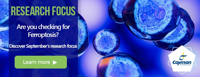 Research focus - drug identification tools