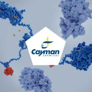 July Focus: Cayman solutions to study kinases