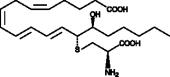 14,15-<wbr/>Leukotriene E<sub>4</sub>
