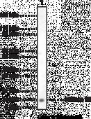 Histone H4 Polyclonal Antibody