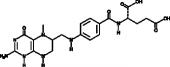 5-<wbr/>Methyltetrahydrofolic Acid