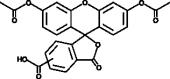 5(6)-<wbr/>Carboxy<wbr/>fluorescein diacetate