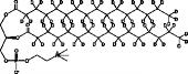 1,2-Dipalmitoyl-d<sub>31</sub>-<em>sn</em>-glycero-3-PC