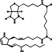 8-<wbr/><em>iso</em> Prostaglandin A<sub>2</sub>-<wbr/>biotin