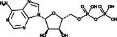 Adenosine 5'-diphosphate