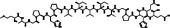 NFAT Inhibitor