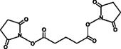 Disuccinimidyl Glutarate