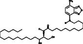 C12 NBD dihydro Ceramide (d18:0/12:0)