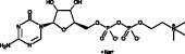 Citicoline (sodium salt)