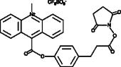 Acridinium NHS ester