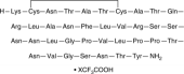 Amylin (rat, mouse) (trifluoro<wbr/>acetate salt)