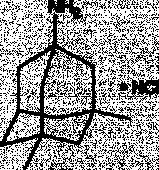 Memantine (hydro<wbr>chloride)