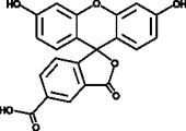 5-Carboxy<wbr/>fluorescein