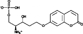Sphingosine-<wbr/>1-<wbr/>Phosphate Lyase Fluorogenic Substrate
