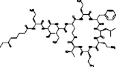 Polymyxin B<sub>1</sub>