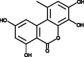 4-hydroxy Alternariol