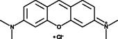 Pyronin Y