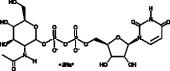 UDP-N-acetyl-<wbr/>D-Glucosamine (sodium salt)