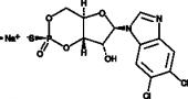Sp-5,6-dichloro-cBIMPS (sodium salt)