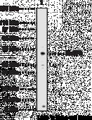 MeCP2 Polyclonal Antibody