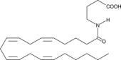 N-<wbr/>Arachidonoyl-<wbr/>γ-<wbr/>Aminobutyric Acid
