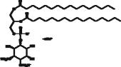 Ptd(S)Ins-<wbr/>(3,4)-<wbr/>P<sub>2</sub> (1,2-<wbr/>dipalmitoyl) (sodium salt)