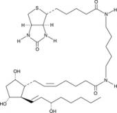 Prostaglandin F<sub>2α</sub>-<wbr/>biotin