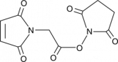 Maleimido<wbr/>acetic Acid N-hydroxy<wbr/>succinimide ester