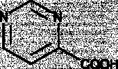 Pyrimidine-<wbr/>4-<wbr/>Carboxylic Acid